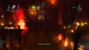 Trine Level 8 Potion 16