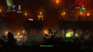 Trine Level 8 Potion 2 and 3 and secret 1