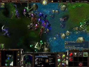 Warcraft 3 Reign of Chaos Orc Chapter 5 Pic 2