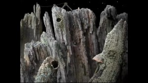 Samorost Cliff Side