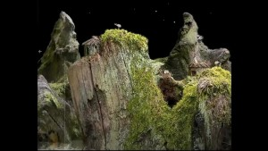 Samorost Mountain