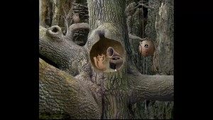 Samorost Stuck on Tree
